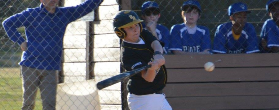 Chaloner baseball opens with wins