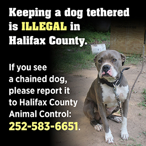 Halifax County Public Health Public Health Dog